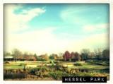 hessel